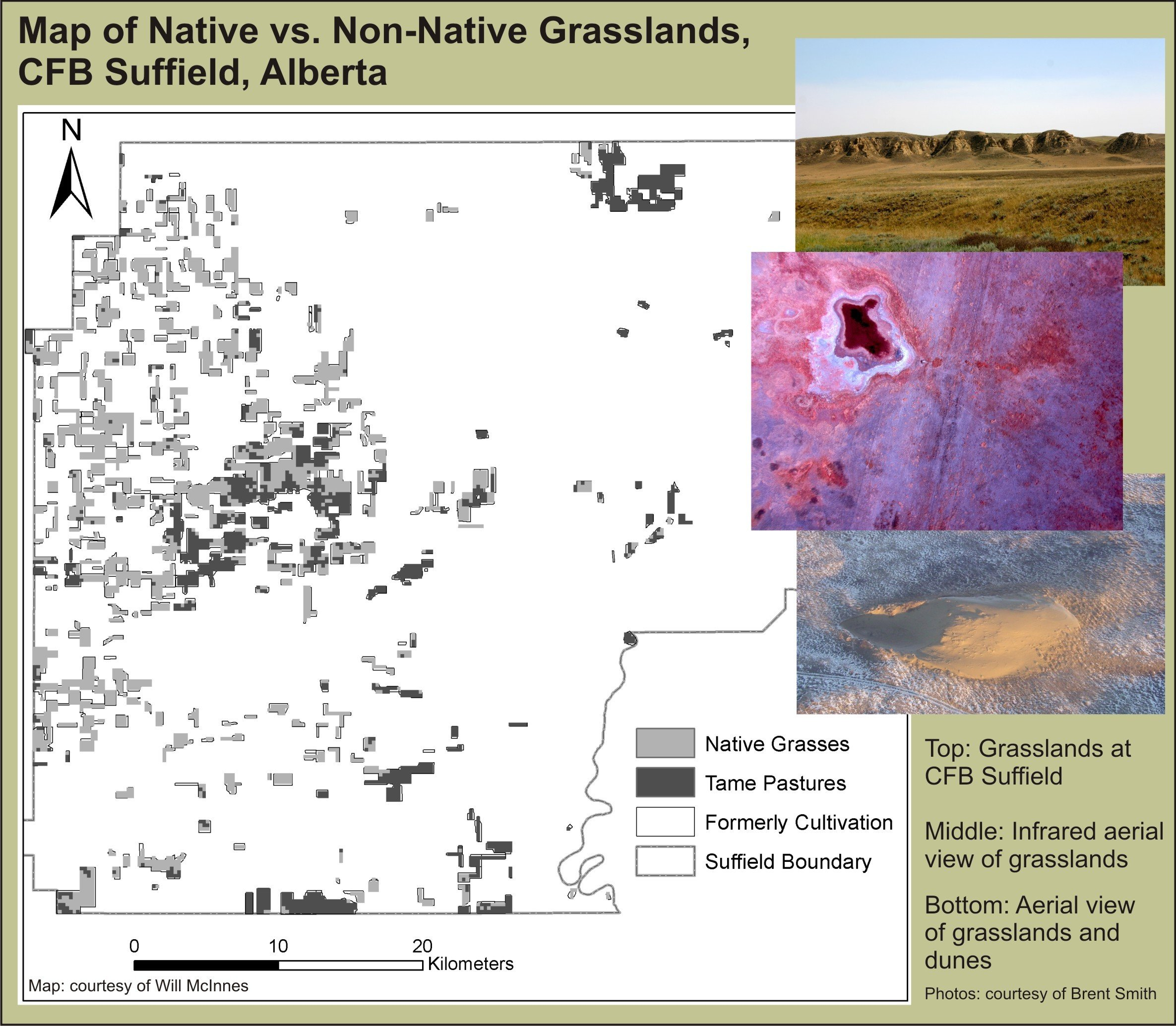 A map of native vs. non-native grassland types at CFB Suffield