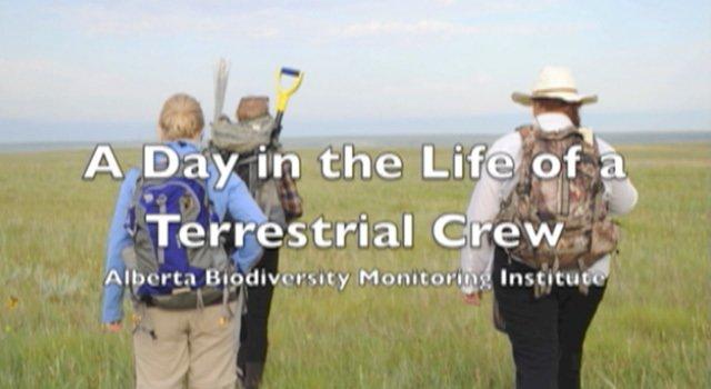 ABMI Terrestrial Monitoring Crew