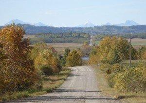 Autumn Alberta