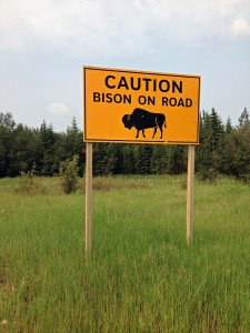 bison_sign