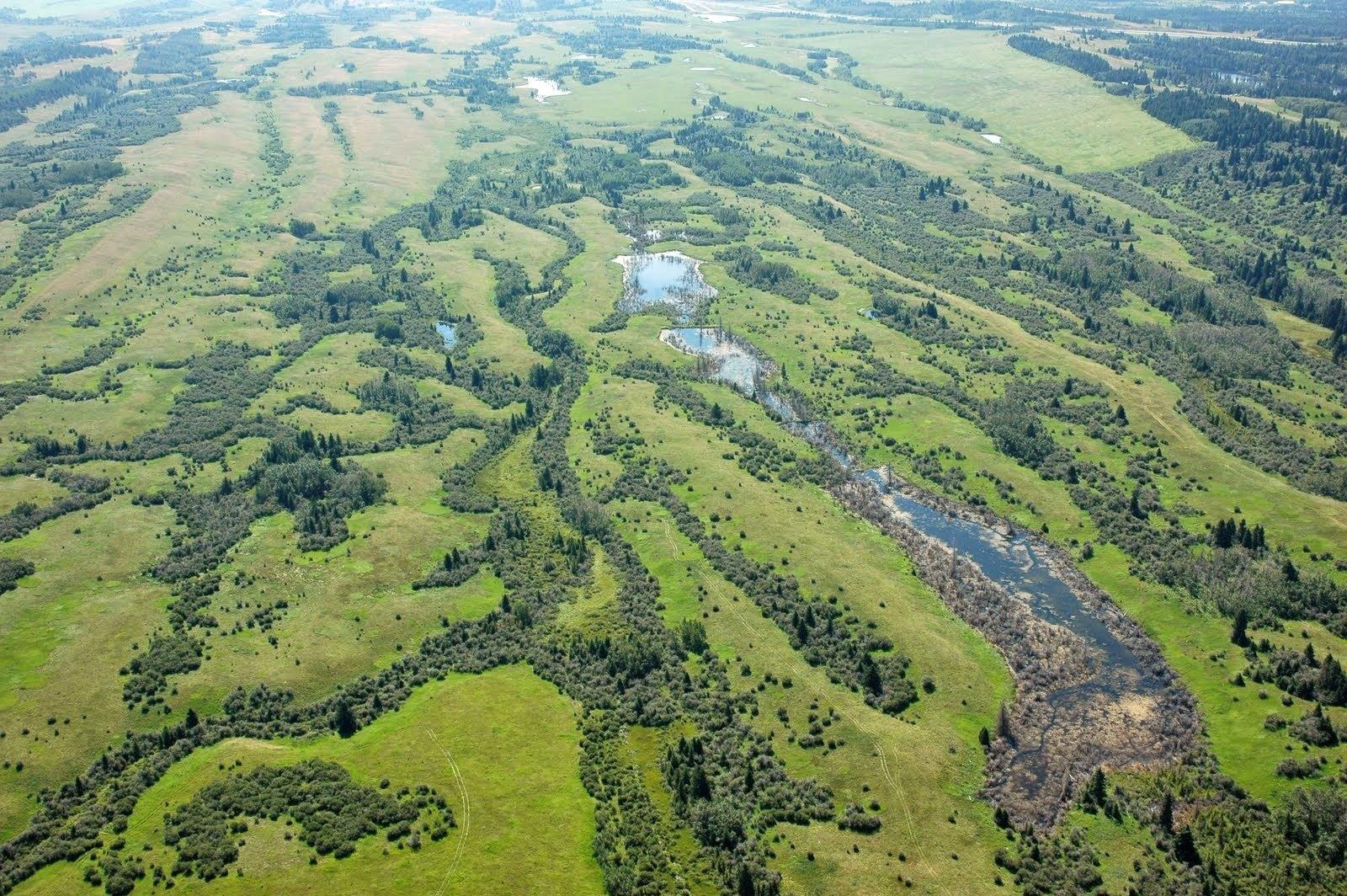 aerial landscape copy