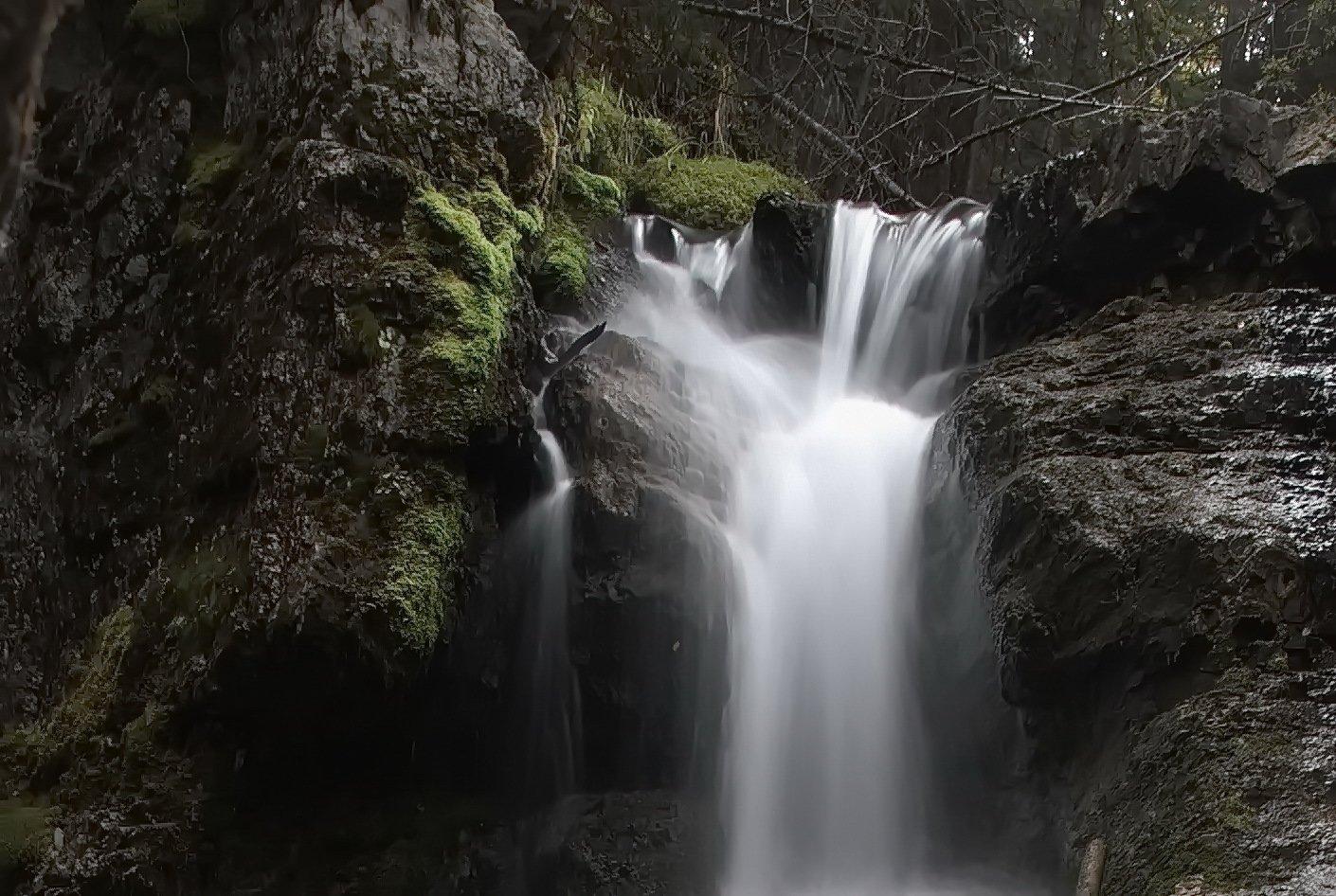 mossy water falls